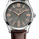 Hugo Boss Designer Watch 1513041 Review
